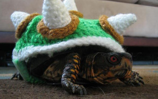 A turtle dressed up as Bowser from the video game Super Mario Bros.