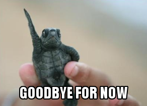 "A picture of a waving turtle with the caption ""goodbye for now."""